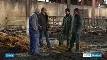 Drôme : une série d'incendies dévaste des exploitations agricoles