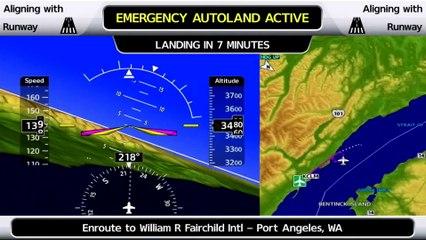 Garmin's Team Talks Autoland With Flying