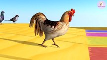 Learn Colors Learn Animals Goose Rooster Dove Duck Sparrows with Water colorful for Children