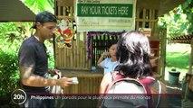 Philippines : une île sanctuaire pour les primates tarsiers