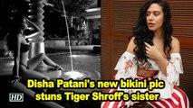 Disha Patani's new bikini pic stuns Tiger Shroff's sister