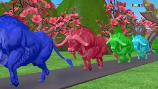 Learn Colors and Animals Names With Colorful Anima