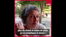 La Tunisie, le choc face au changement climatique