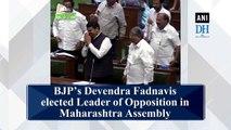 BJP's Devendra Fadnavis elected Leader of Opposition in Maharashtra Assembly