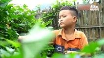 माता-पिता की मौत के बाद दादी ने भी साथ छोड़ा, अब खुद खेती कर पेट पालता है 10 साल का बच्चा