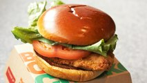 McDonald's Testing New Chicken Sandwich For 2020