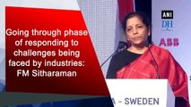 Going through phase of responding to challenges being faced by industries: FM Sitharaman