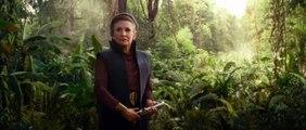 "Star Wars The Rise Of Skywalker  ""Celebrate"" TV Spot"