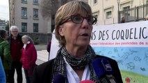 """Arrêté anti-pesticides à Revest-des-Brousses : """" L'élue doit encore apporter des preuves"""" pour la ju"""