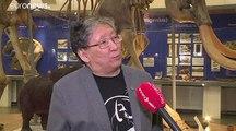Κουτάβι ηλικίας 18.000 ετών ήταν το απολίθωμα στη Σιβηρία