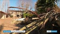 Vaucluse : le témoignage bouleversant d'un homme sauvé des inondations par les trois secouristes décédés
