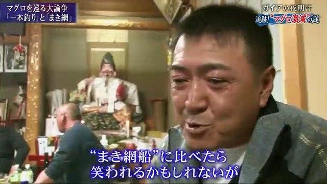 """ガイアの夜明け【追跡!""""マグロ激減""""の謎】 - 19.12.03"""
