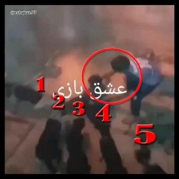 5 iRAN COBAN KOPEGiNE KAFA TUTAN ELEMAN - 5 PERSiAN SHEPHERD DOG and PEOPLE vs