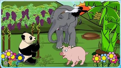 สื่อการเรียนการสอน เพลงเด็กๆ สอนภาษาอังกฤษเรื่อง สี color ป.2 ภาษาอังกฤษ