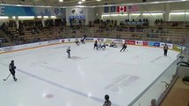 Highlights: Broncos (2) at ICE (4)