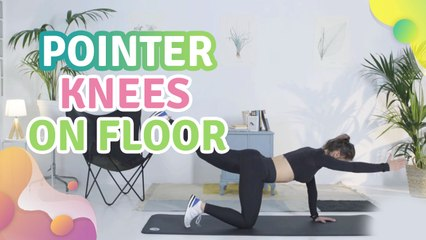 Pointer, knees on floor -  Step to Health