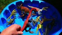 Dinosaurs for kids, Dinosaurs Learn Names, Jurassic World Dinosaur Educational Video