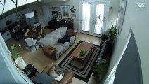 Caméra de surveillance : cette araignée a fait sa toile dessus !