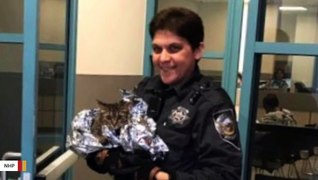 Nevada Troopers Rescue Scared Cat Found On Highway During Rush Hour
