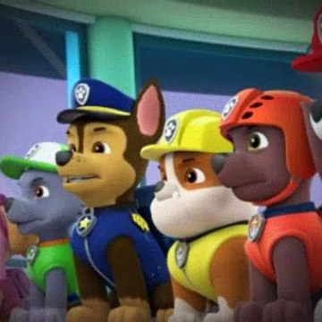 PAW Patrol S02E44 Pups Save the Woof and Roll Show