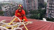 Chinese firefighters rescue Samoyed dog trapped on seven-story building's roof