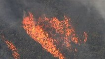 L'Australia brucia: in fiamme 300mila ettari a nord di Sydney