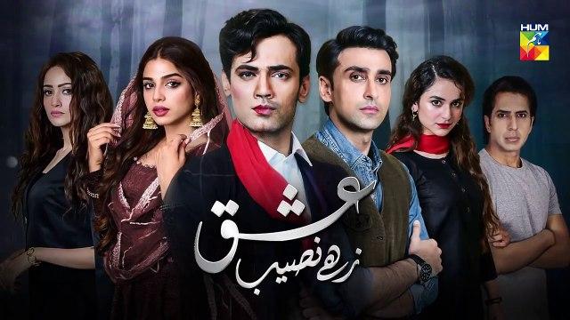 Ishq Zahe Naseeb Episode 25 Promo HUM TV Drama