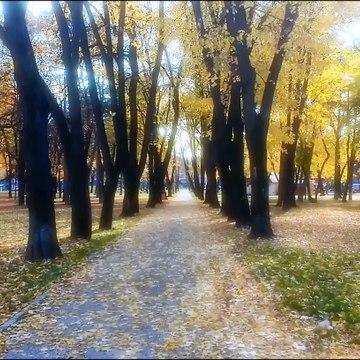 Veliki park. kragujevac Serbia 10th November 2019