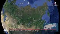 L'image incroyable de ces ours en Sibérie qui se rapprochent de plus en plus des grandes villes à la recherche de nourriture qui manque en raison de la fonte de la banquise