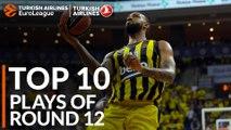 Turkish Airlines EuroLeague Regular Season Round 12 Top 10 Plays