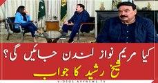 Will Maryam Nawaz go to London or not? Sheikh Rashid's analysis