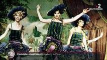 Comédies musicales : un peu de Brodway à Paris
