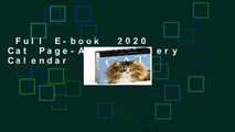 Full E-book  2020 Cat Page-A-Day Gallery Calendar  For Free