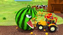 Learn Colors with Pacman as he chomps Fruit on Tree and rolls down a magic slide