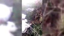Çuvallara konmuş ayakları bağlı köpekleri avcılar kurtardı