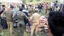 Dois elefantes morrem atropelados por trem na Índia