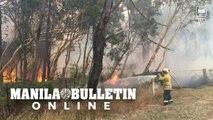 Firefighters battle bushfires outside Sydney