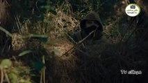 مسلسل قيامة ارطغرل الحلقة 465 || مسلسل قيامة ارطغرل الجزء الخامس الحلقة 465 مدبلج - 10/12/2019