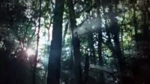 Merlin S01E11 The Labyrinth Of Gedref