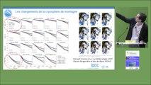 Focus sur l'évolution de la cryosphère en France métropolitaine (Part II)