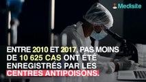Champignons : gare aux intoxications mortelles !