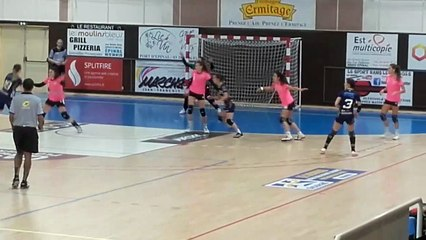 Handball   N1F 2019/2020 : Festival signé Alexandra Gonigam (Epinal) face à Dijon (33-33)