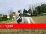 equitation obstacle avec quelques un de l'equipe de concours