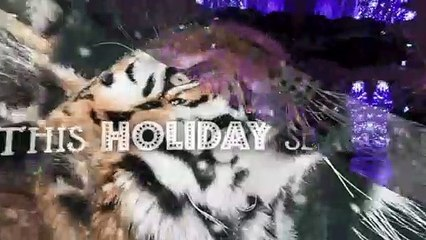 Happy Holidays From CZS and Brookfield Zoo!