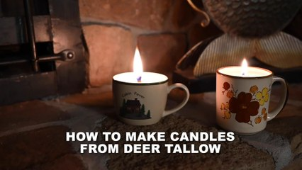 How to Make Candles from Deer Tallow