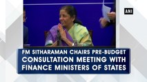 FM Sitharaman chairs pre-budget consultation meeting with Finance Ministers of states