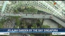Gardens by the Bay di Singapura Koleksi Tumbuhan dari Penjuru Dunia