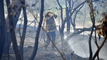Australia records its hottest day ever as bush fires rage on