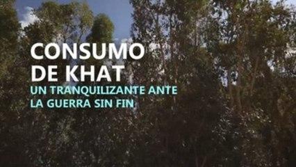 Khat, un tranquilizante para la guerra