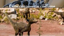 Cette découverte confirme que les derniers jours des dinosaures étaient sur une Terre en changement